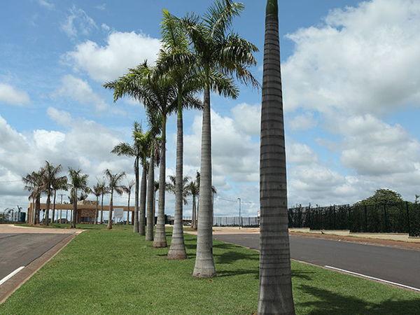 Condomínio Quinta Do Golfe Jardins